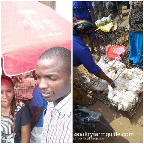 broiler market Ekwulobia, Anambra Nigeria