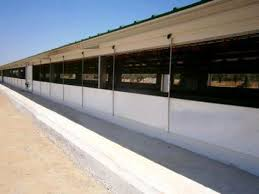 open sided poultry house
